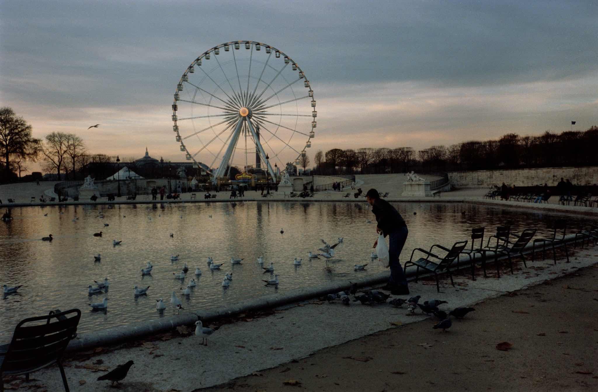 1999 11 18 Paris Jardin Des Tuileries The Millennium Wheel